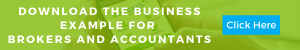 Business example for brokers and accountants